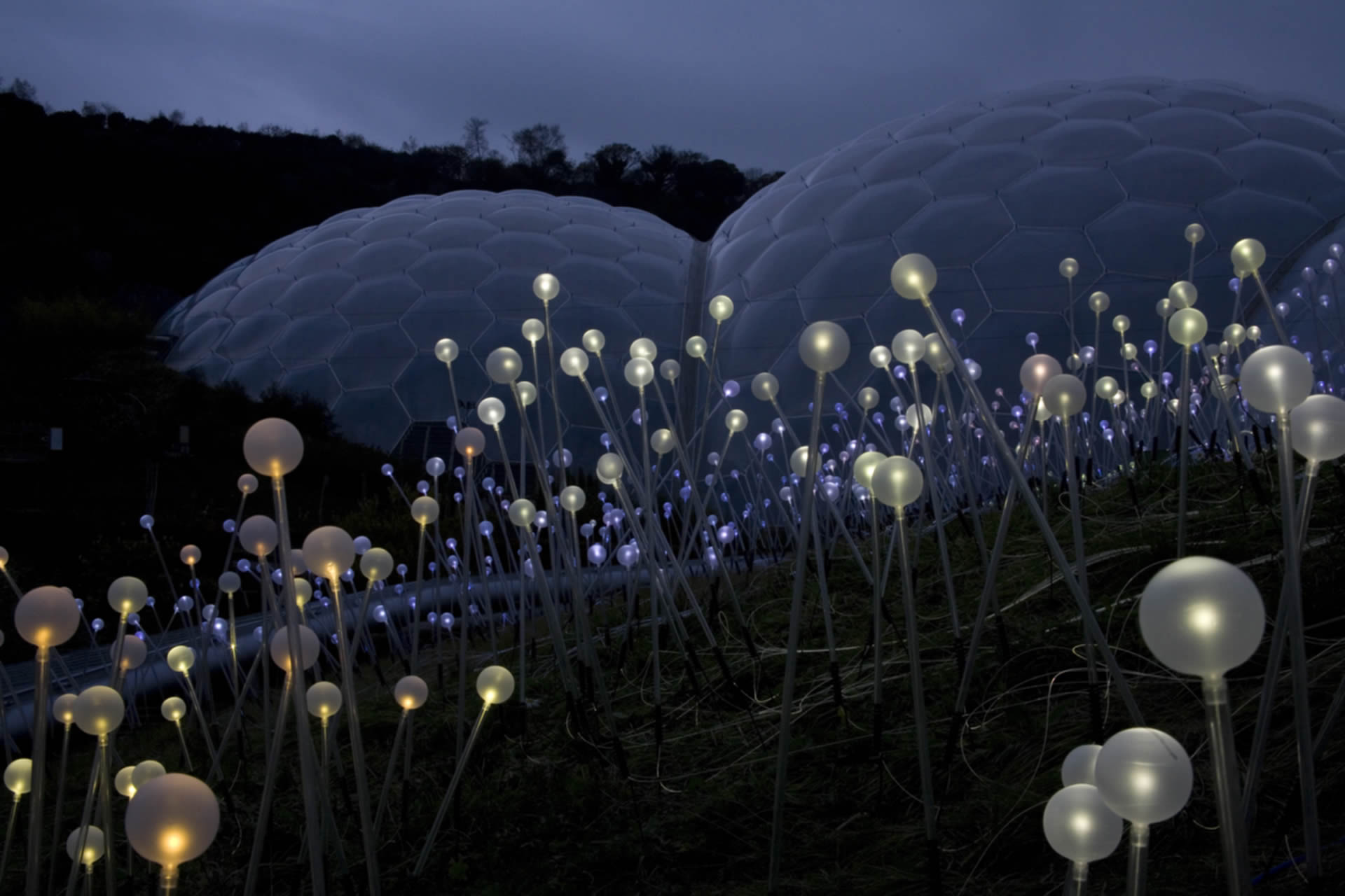 Field Of Light At Eden Project Bruce Munro