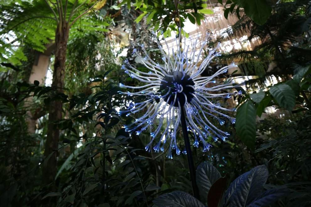Image for Atlanta Botanical Garden, Atlanta, GA USA. 2015