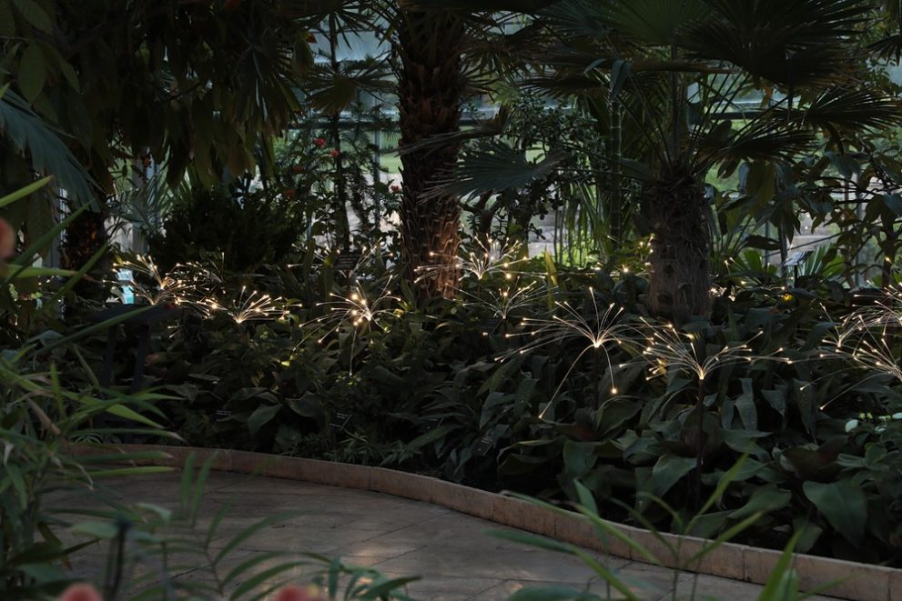 Image for Nicholas Conservatory and Gardens, IL, USA 2017